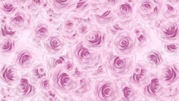 Számos rózsaszín rózsa rügyek leesik, hurok háttér