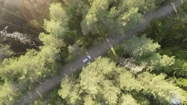 Letecký pohled na bílé auto na silnici v lese