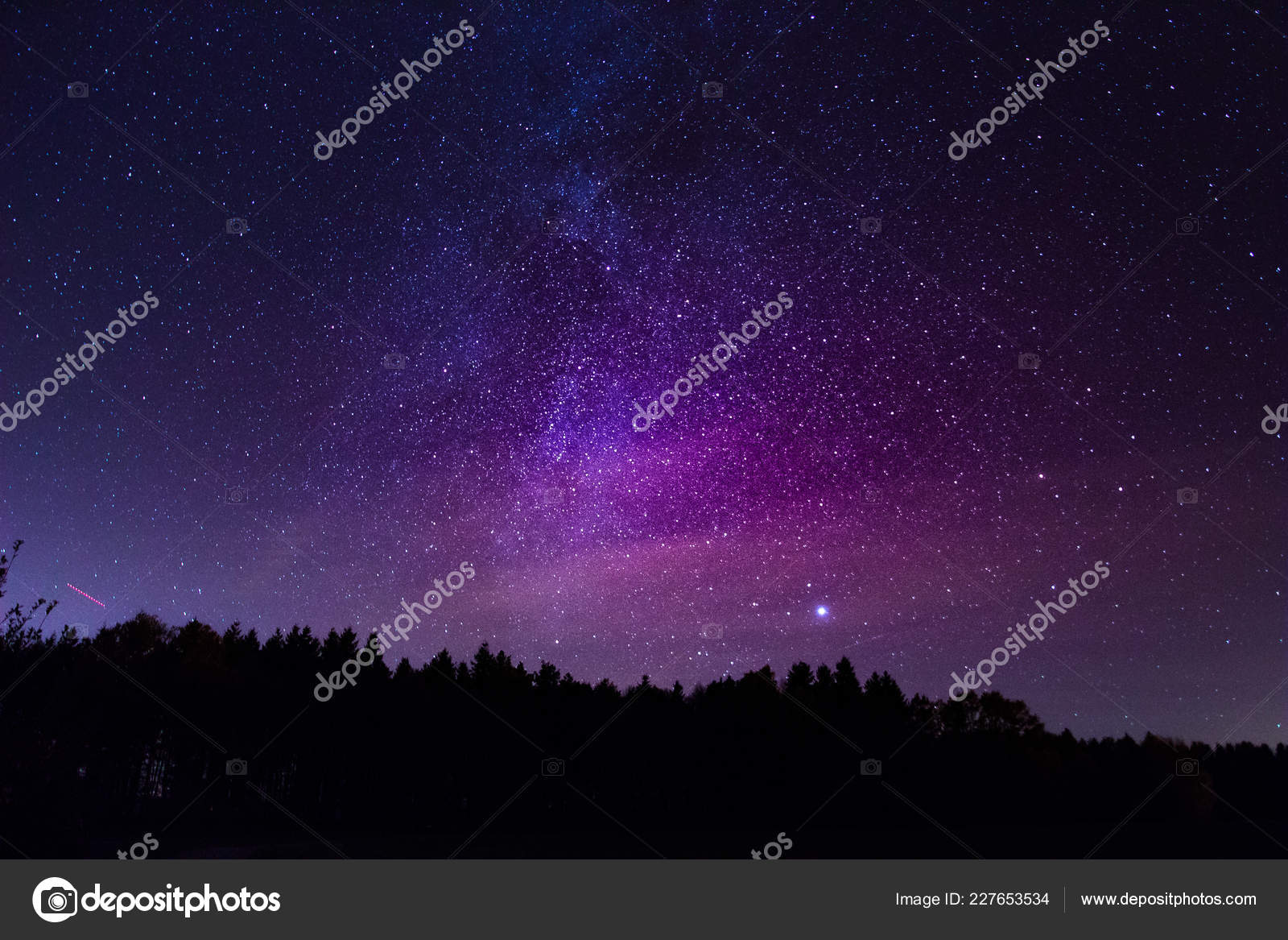 Belle Voie Lactée Dessus Forêt Papier Peint Photographie