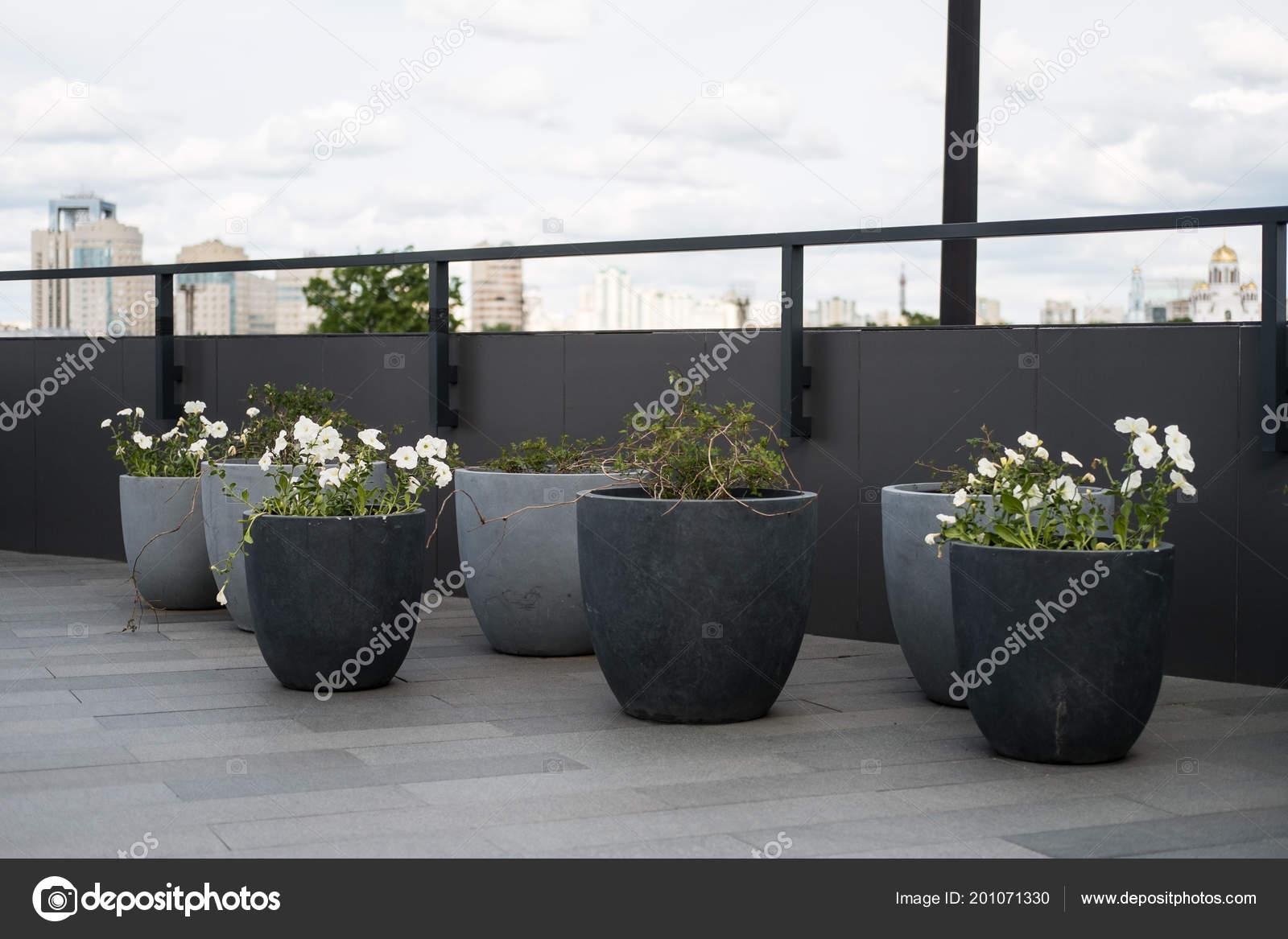 Modern Flower Beds Exterior Garden Decorative Grass Concrete
