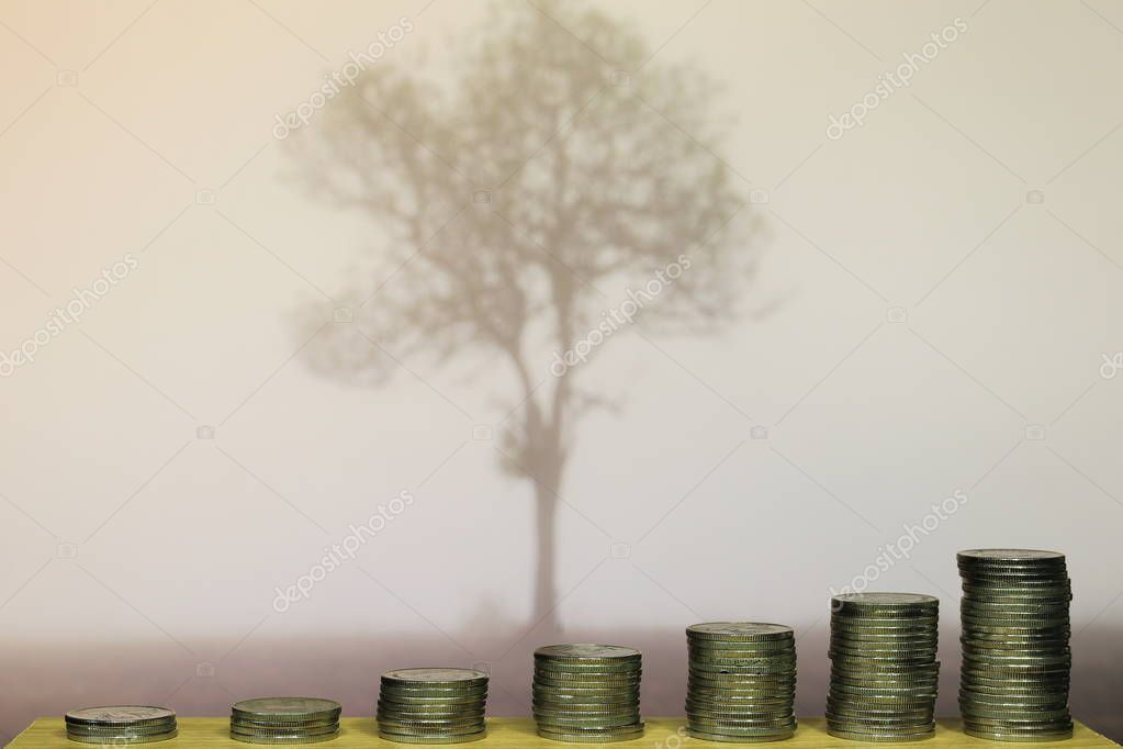 funding for environmental conservation.  pile of coins in increasing chart shape in front of fog covered single tree.