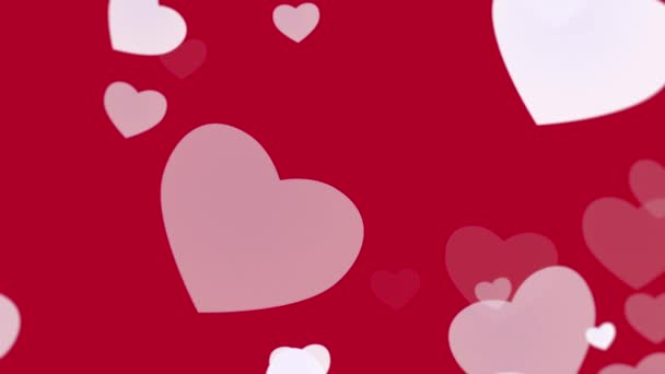 Valentines day shiny background with animation of romantic white hearts on red background