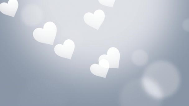 Valentines day shiny background with animation of romantic small white hearts on silver background