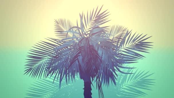Closeup tropických palem, letní pozadí
