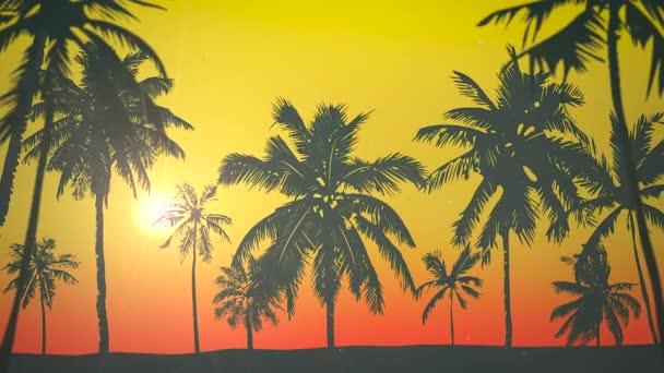 Panoramatický výhled na tropickou krajinu s palmami a západ slunce, léto pozadí