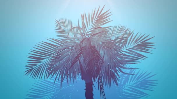 Closeup tropical palm trees, summer background