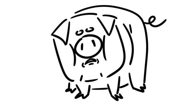 Funny Cartoon Pig Grunts Hand Drawn Frame Frame Animation — Stock ...