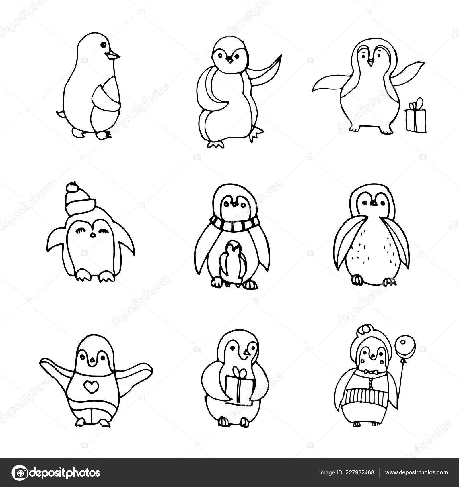 Izolovana Tucnak Rucne Kreslene Ilustrace Vektorove Sada Ruznych