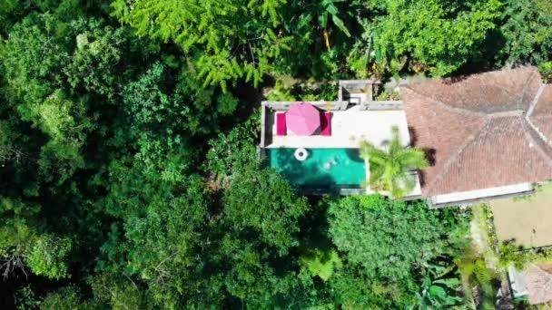 tropische Villa Pool Frauen schwimmen Bali Ubud oben anzeigen 2k 60fps