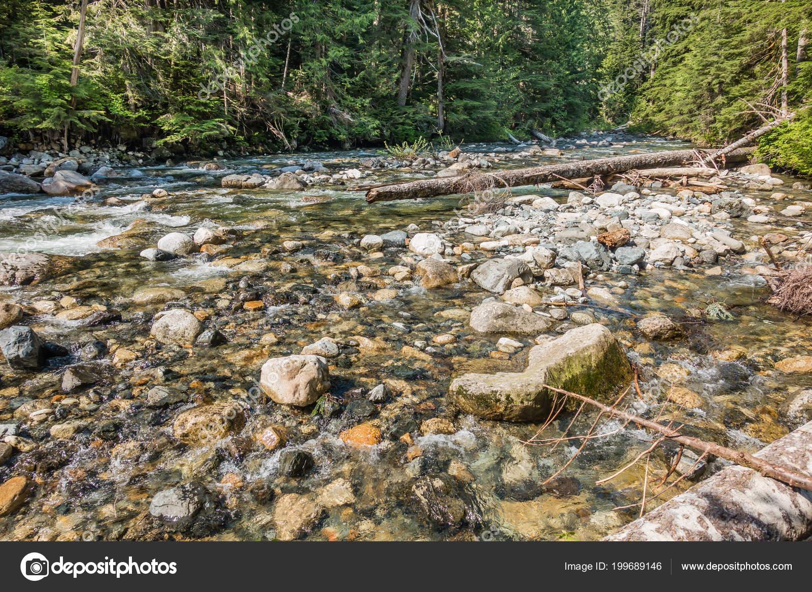 Landscape Shot Denny Creek Washington State Rocks Logs Can