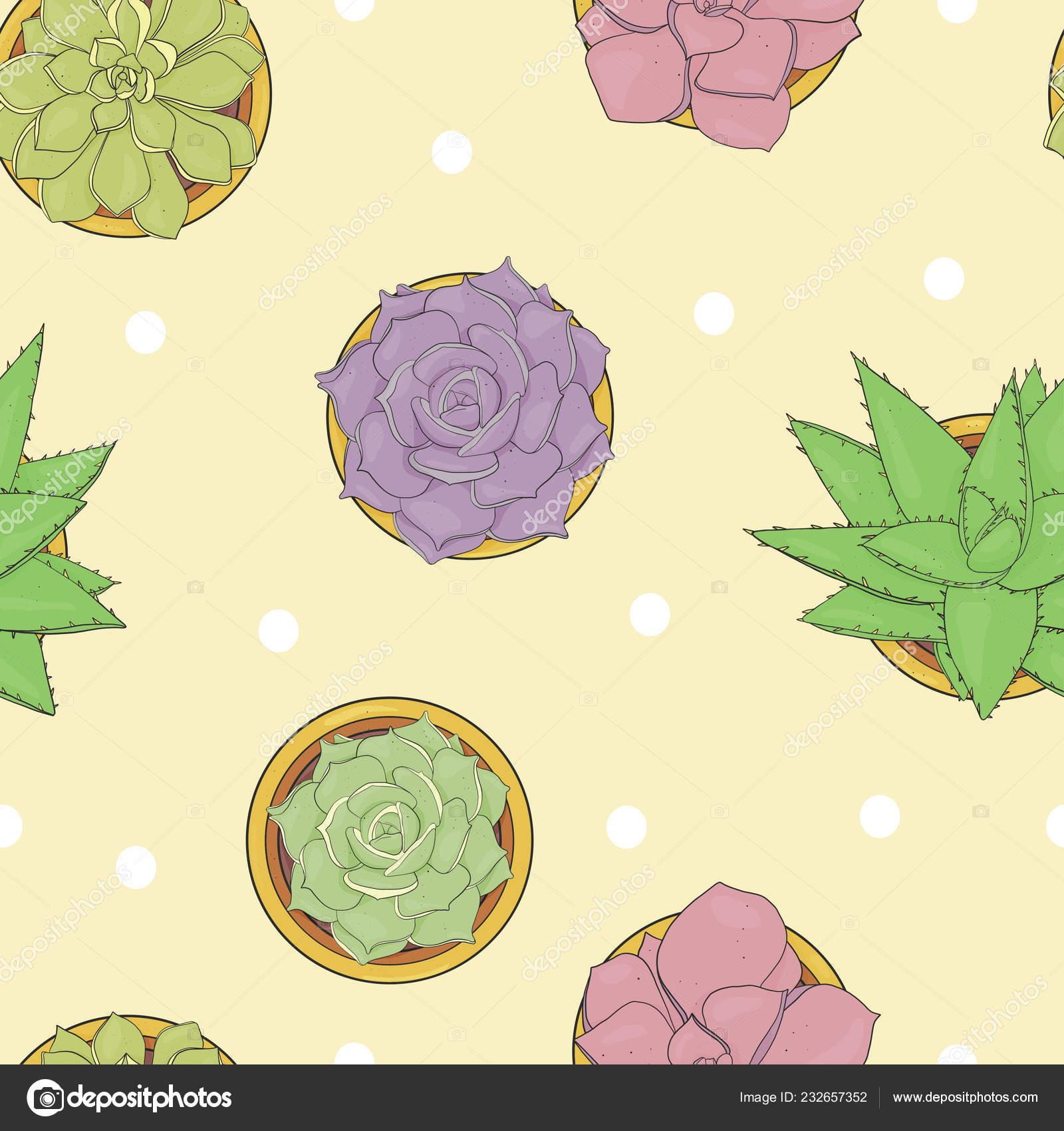 Sem Costura Padrao Floral Com Diferentes Plantas Suculentas Em