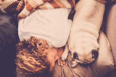 best friends forever with nice pug dog and beautiful swirl hair caucasian woman sleep together in the morning on the sofa. absolute friendship concept between people and animals. tenderness and sweetness story