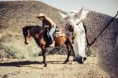 Fotografie portrét koně při pohledu na fotoaparát s krásnou rider žena a jeden další zvíře na pozadí. slunečný den volnočasové aktivity venku v západní scény