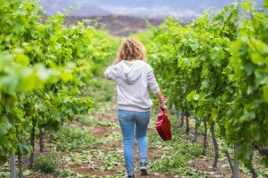 woman holding acoustic ukulele guitar while walking in vineyard