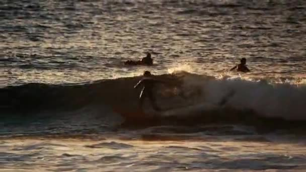view of surfers floating on sea waves at daytime