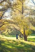 A lány fut át az őszi park. Karcsú nő vonatok a természetben. Sport az erdőben. Barna fut végig egy piszok utat.