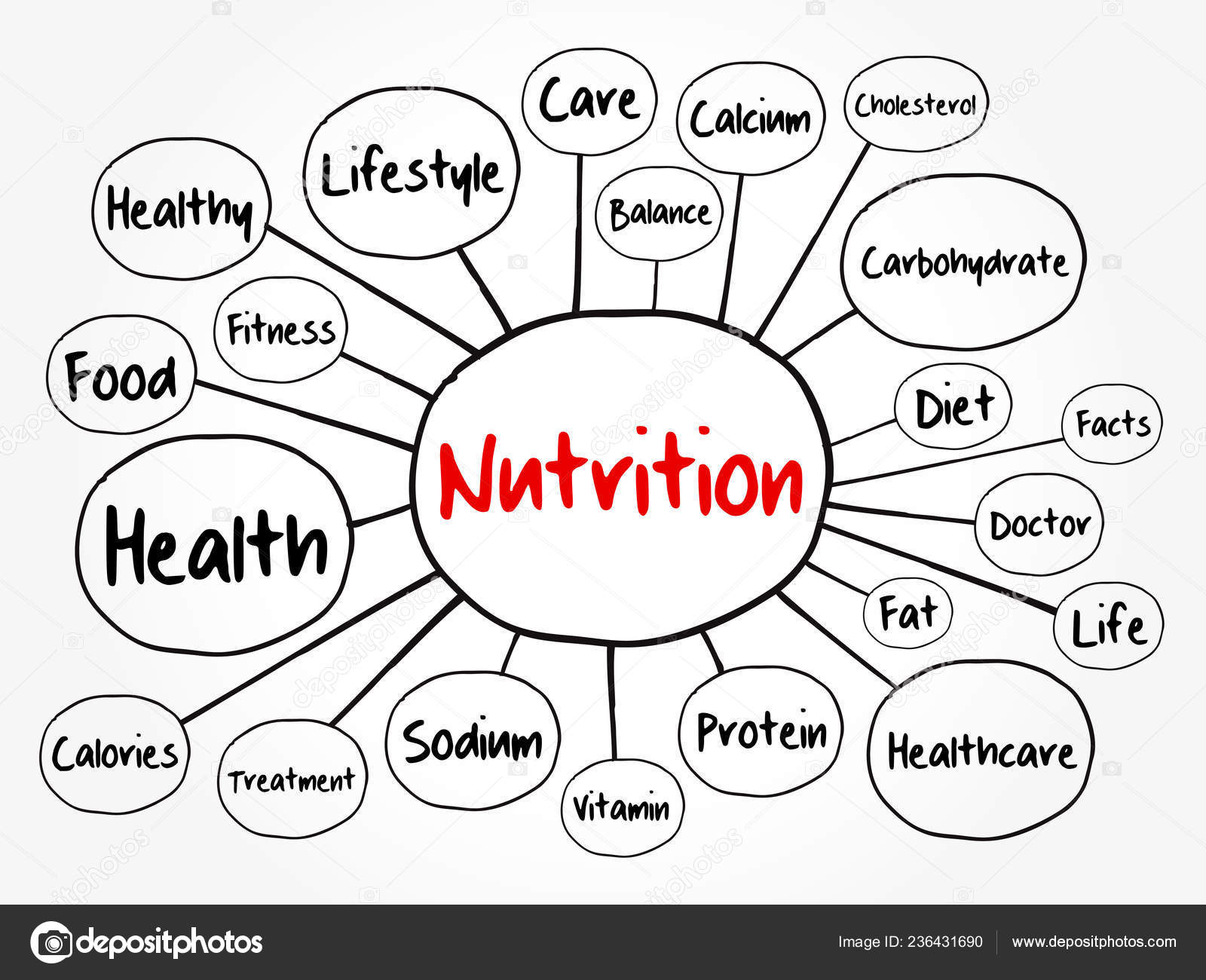 Nutrition Mind Map Flowchart Health Concept Presentations Reports