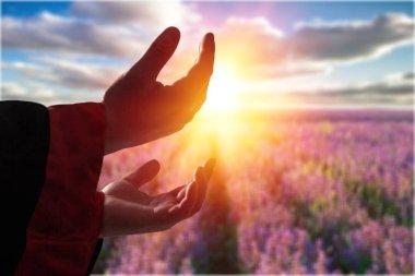 Hands of human praying on sunset backgroun