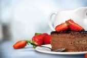Kus čokoládového dortu, detailní zobrazení