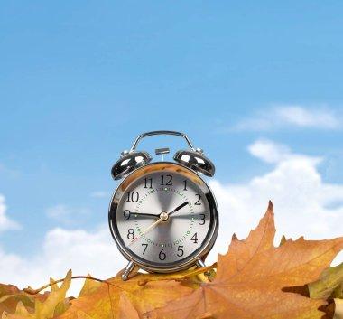 Retro alarm clock on yellow autumn leaves