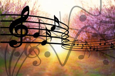 musical notes background, music entertainment