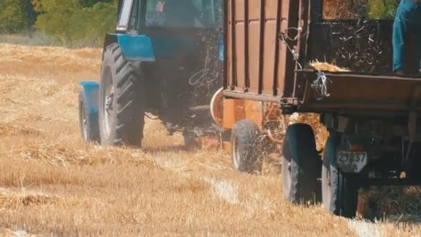 Wheat Harvest. Combine Unloading Wheat into a Tractor Trailer During Harvest.