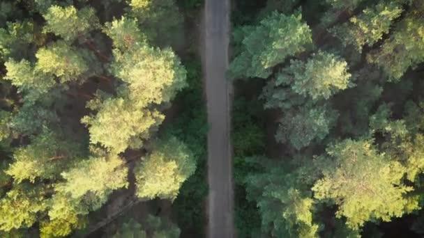 Pohled shora létání nad staré opravené lesní cesta. Woods rostoucí obě strany