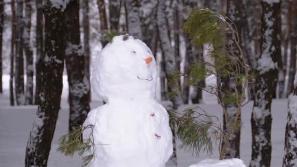 Tvář sněhulák v borovém lese s zasněžené vánoční stromky