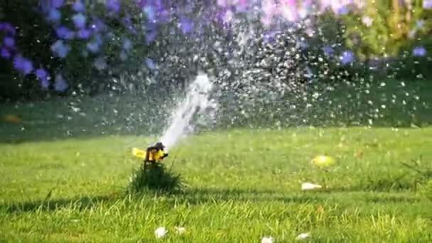 Automatický postřikovač trávníků na zahradě se zelenou trávou v pomalém pohybu