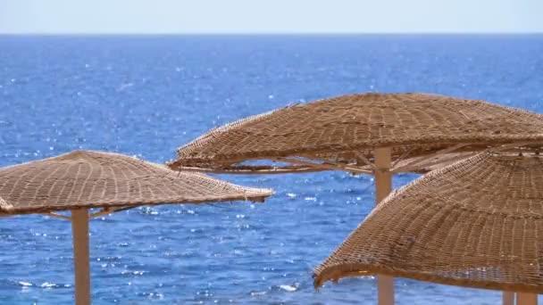 Prázdná pláž s deštníky v Egyptě na pozadí Rudého moře