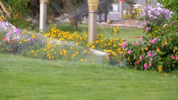 automatischer Rasensprenger im Garten mit grünem Gras in Zeitlupe