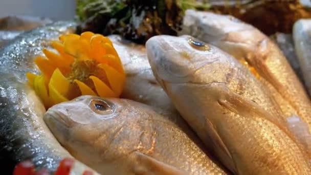 Friss tengeri hal az eladott a pultra a Store az utcán