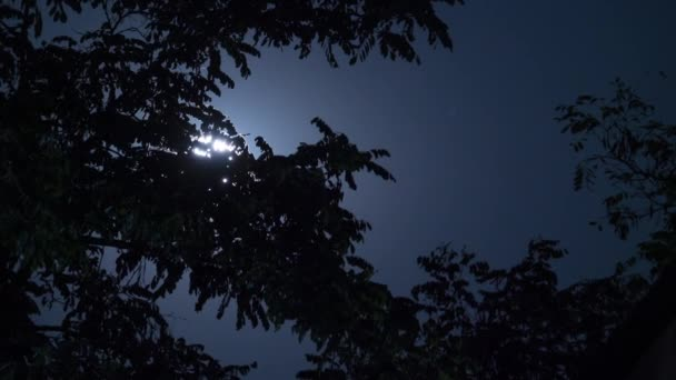 Full Moon Moves in the Night Sky through Trees and Dark Clouds. Timelapse