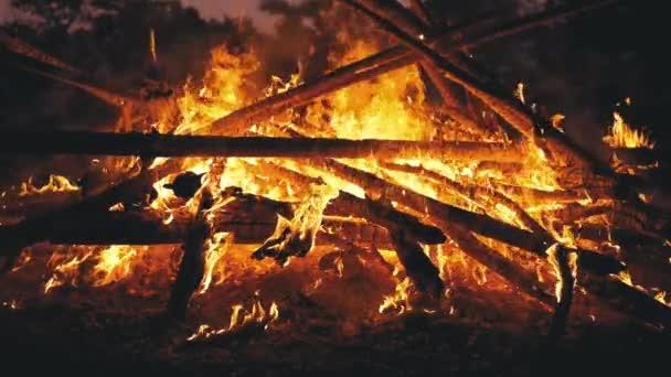 Velký Bonfire z klády spálení v noci v lese. Pomalý pohyb v 180 FPS