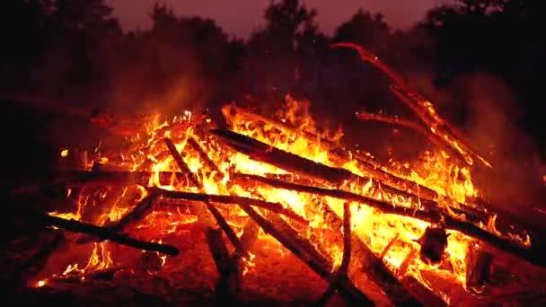 Nagy tábortűz a naplók Burns éjjel az erdőben. Lassított mozgás a 180 fps-ben
