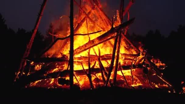 Velký Táborní požár větví v noci hoří v lese. Zpomaleně