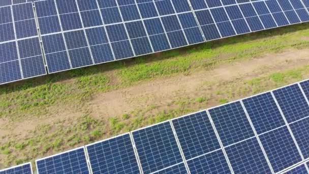 Luftaufnahme des Solarkraftwerks. Paneele stehen in einer Reihe auf der grünen Wiese. Sommer