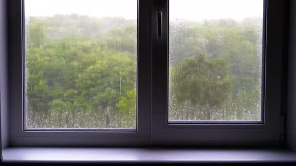 Déšť za oknem