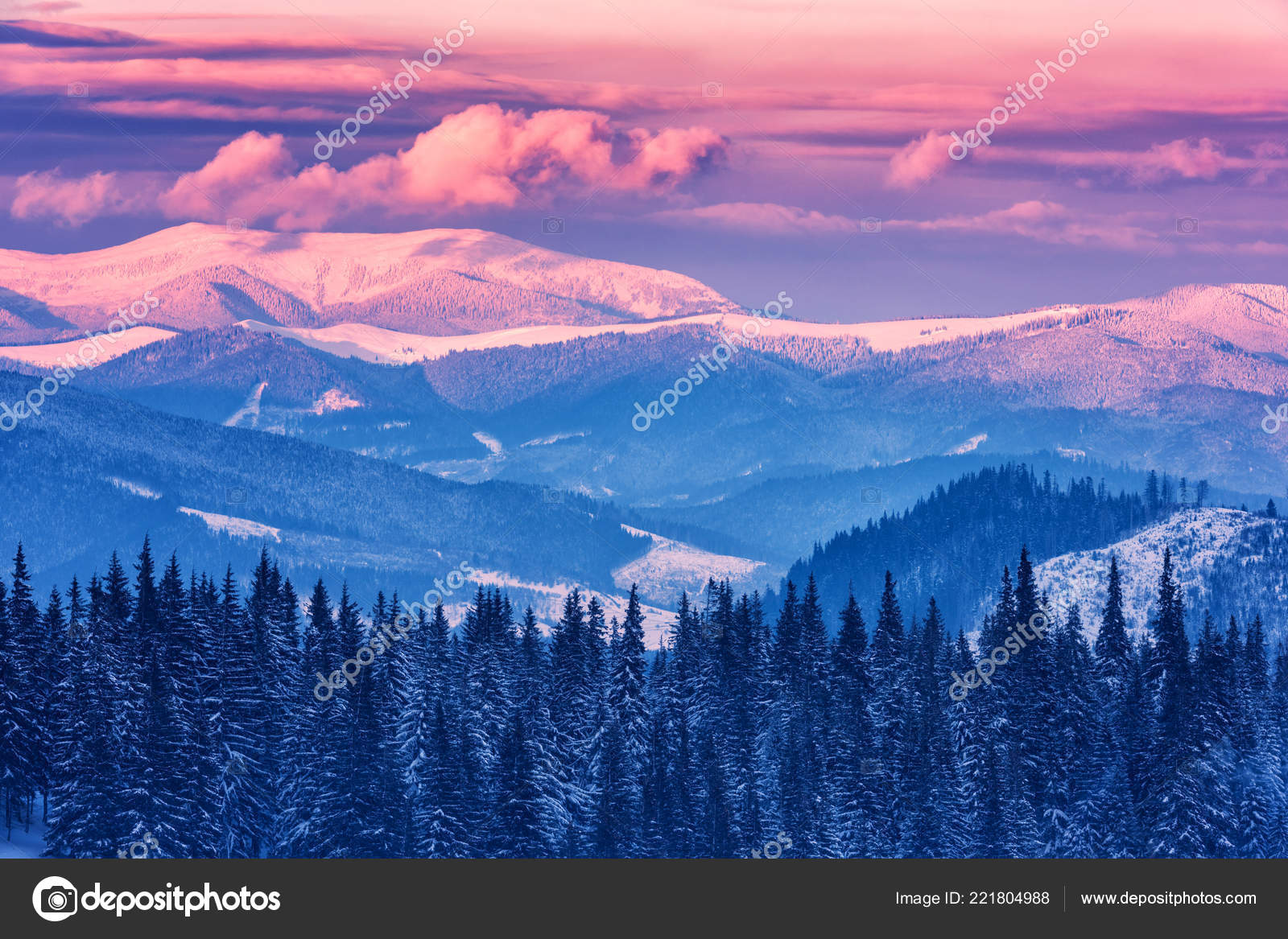 Mountain Christmas Tree.Beautiful Winter Landscape Snowy Mountains Christmas Trees
