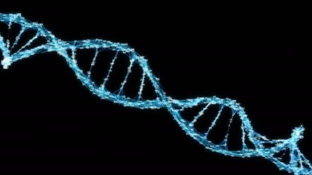 Digitális Plexus DNS molekula véletlenszerűen kiválasztott számjeggyel hurok alfa-csatorna
