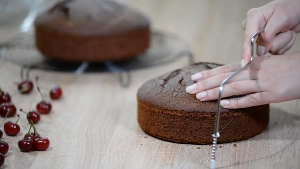 Řezací dort na vrstvách. Díky čokoládové vrstvy dort.