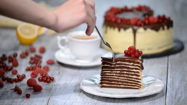 Chocolate honey layer cake Medovik. Piece of chocolate honey cake.