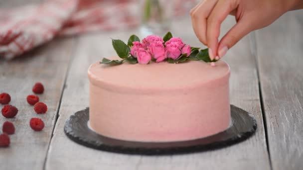 Der Prozess der Dekoration Kuchen mit rosa Schokolade Bohnen. Kochen vielschichtigen Kuchen aus Keksen und Sahnefüllung, Beeren. Hausgemachte Kuchen für Geburtstagsfeier oder Hochzeit.