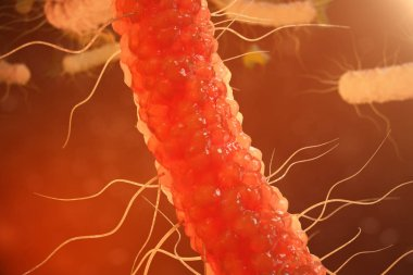3D illustration virus bacteria. Viral infection causing chronic disease, decreased immunity. Red bacteria under microscope close-up. Virus abstract background in space.