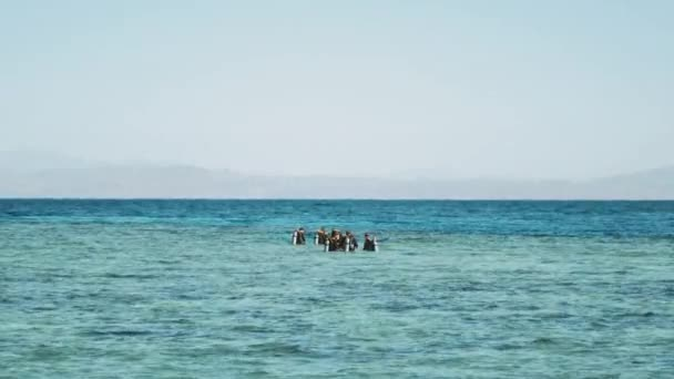 A group of scuba divers go diving in red sea, a group of people in diving lessons learn to dive, sunny day and clear water in Dahab, Egypt, full hd