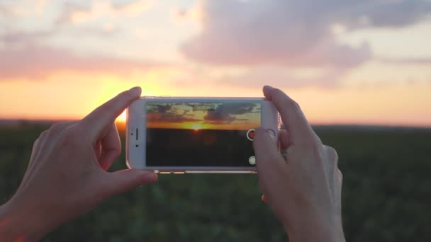 Girl agronomist uses a smartphone in agriculture. Smartphone in the setting sun. Slow motion video. Close-up hands.