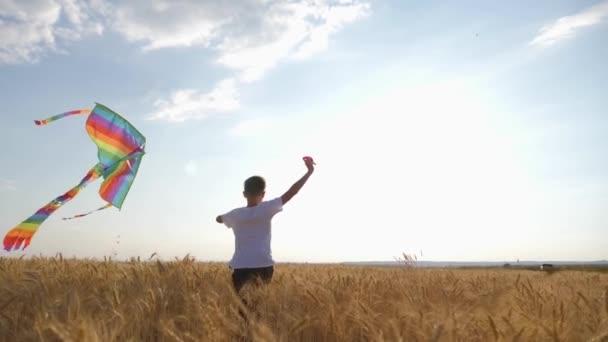 Chlapce vede přes pole při západu slunce s draka nad hlavou. Chidhood sen. Hry pro děti