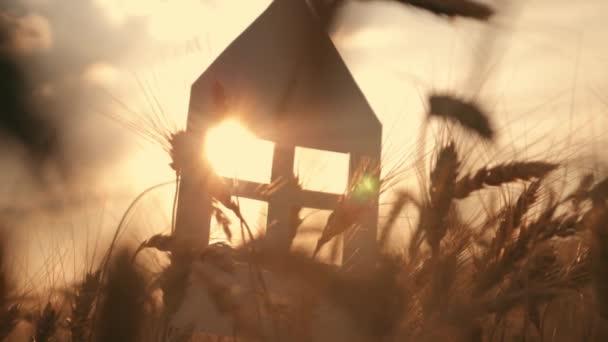 Detail z pálivých papriček papírový model doma v poli při západu slunce. Silueta domu papíru v paprscích zapadajícího slunce. Sen o vlastním domě