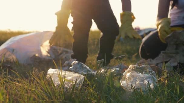 Csapatmunka. Egy boldog család segít megőrizni természet tiszta és összegyűjti szemetet a zöld mezőben naplementekor. A szemétgyűjtés fogalma. Önkéntesek megmenteni a világot a környezeti katasztrófából.