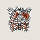 Fényképek Tattoo anatomy vintage illustration. Roses chest skeleton.  illustration
